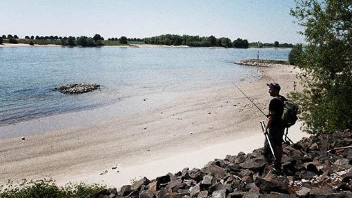 Zander Angeln an Flüssen