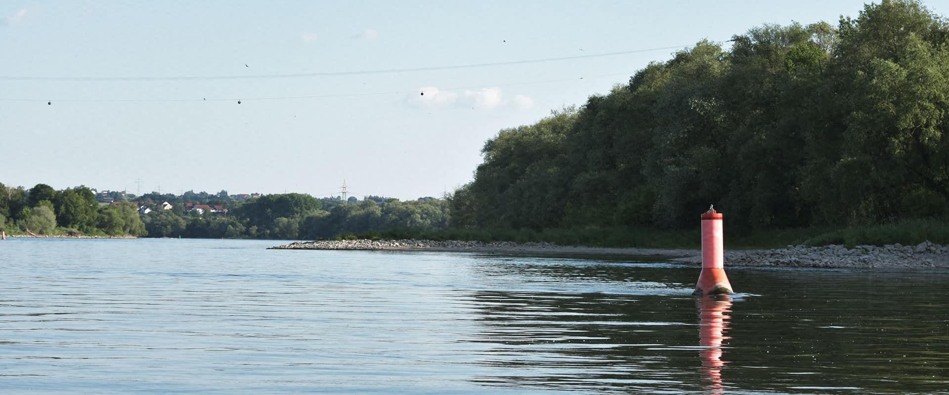 Zanderangeln an der Donau